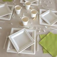 50 ASSIETTES BIODEGRADABLES CARRES GM